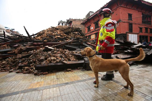 UNICEF-17-million-children-in-urgent-need-after-Nepal-earthquake